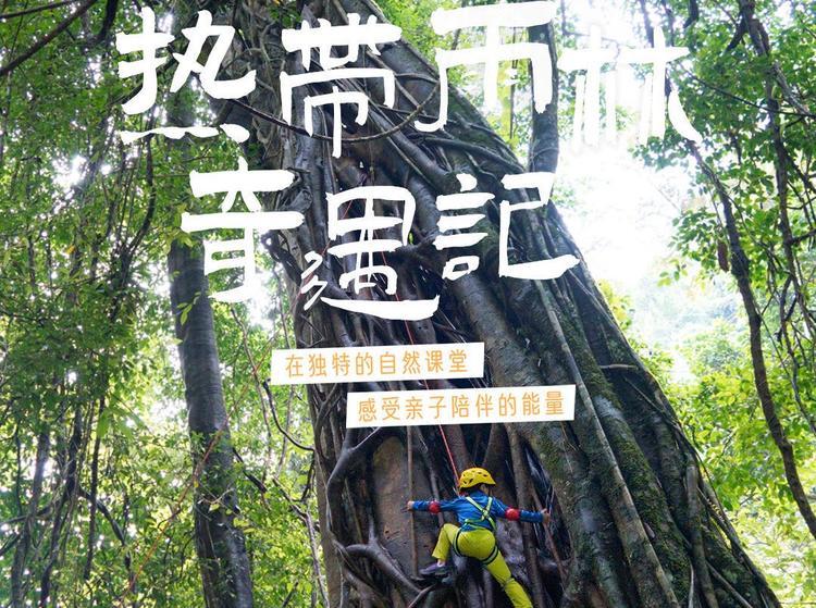 游美 | 3-10岁小龄亲子雨林专属定制营