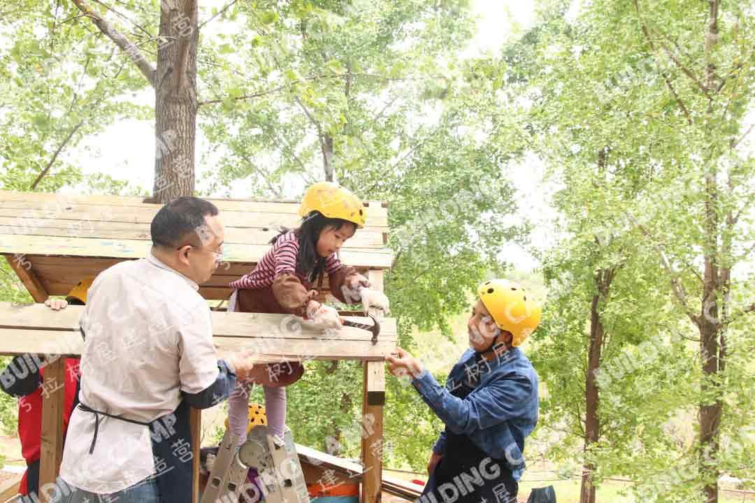 考拉树屋建造营